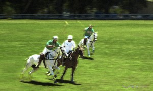The polo match was perfect, but the grass needed retouching for that flawless look, I used a slow shutter speed and grain to convey the action. Photography by photographer in Los Angeles