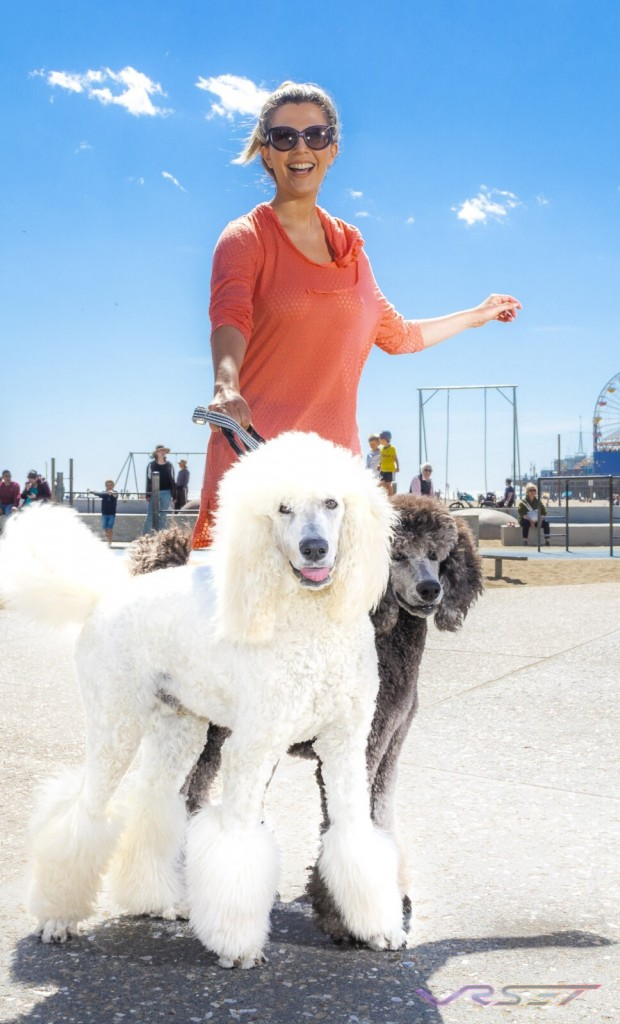 California Woman Black White Poodle Dogs Top Fashion Photographer Los Angeles Orange County Video Production David Victory